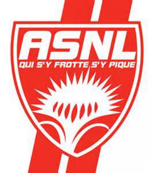 deux places de foot ASNL / ORLEANS