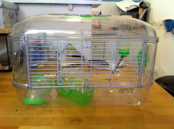 cage pour gerbille casi neuf -1ans