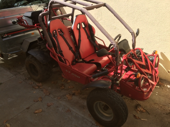 Petite Annonce : Buggy kinroad 250 xt - Vend Buggy Kinroad 250 XT.  Batterie neuve  Année 2014.  Prix