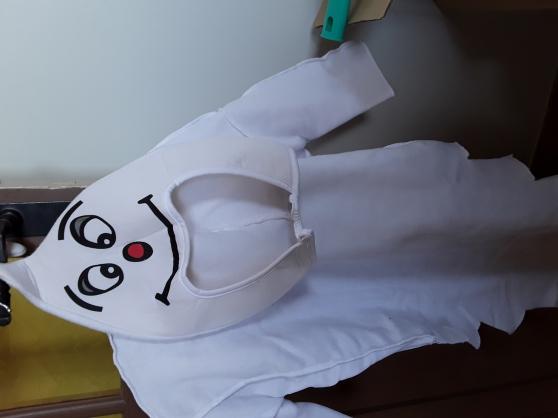 deguisement fantome - Annonce gratuite marche.fr