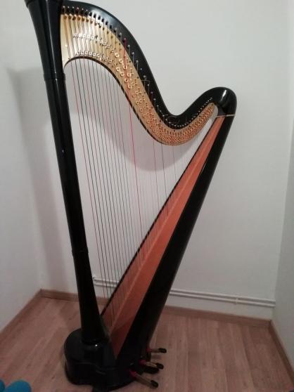 Harpe - Photo 2