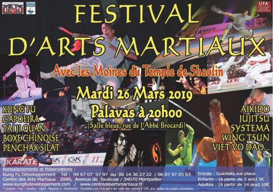 Annonce occasion, vente ou achat 'Festival d\'arts martiaux'