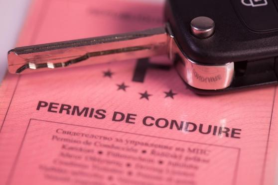 Annonce occasion, vente ou achat 'Obtenez votre permis de conduire en lign'