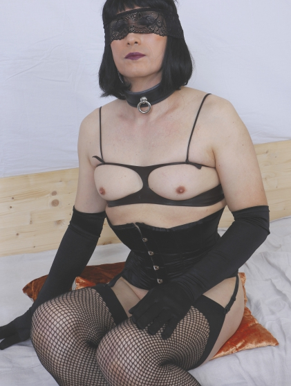 travesti exhibe docile
