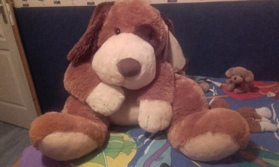 Annonce occasion, vente ou achat 'Peluche gros chien'