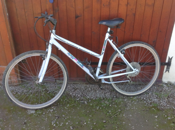 Annonce occasion, vente ou achat 'Mountain bike'