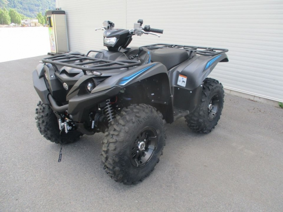 Annonce occasion, vente ou achat 'Grizzly 700 EPS SE'