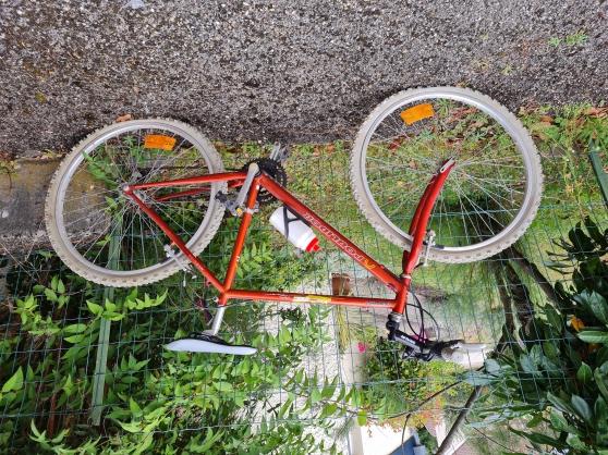 Annonce occasion, vente ou achat 'Vélo tout terrain - GRIF SHIFT'