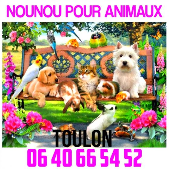 NOUNOU POUR ANIMAUX SUR TOULON - Photo 2
