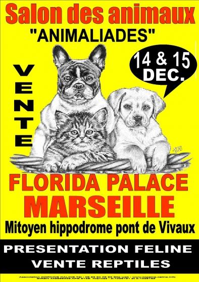 Salon du chiot et du chaton 14 15 dec marseille for Salon du chiot marseille