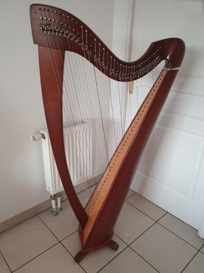 Annonce occasion, vente ou achat 'Harpe celtique 38 cordes'