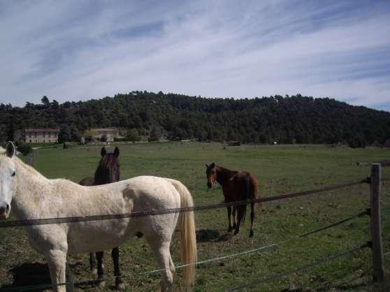 PENSION/RETRAITE nature à Aups sur 10 ha