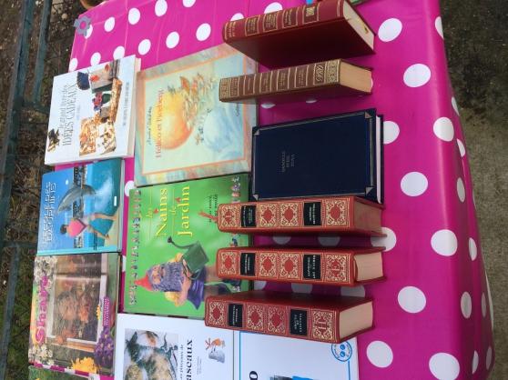 Annonce occasion, vente ou achat 'Vend lots de livres'