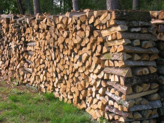 Annonce occasion, vente ou achat 'bois de chauffage'