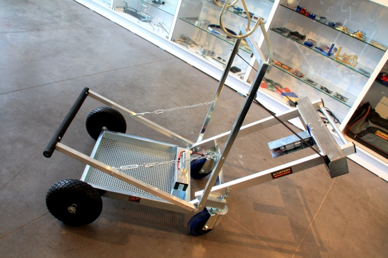 Annonce occasion, vente ou achat 'Dalmi électrique Kart Transporter * NOUV'