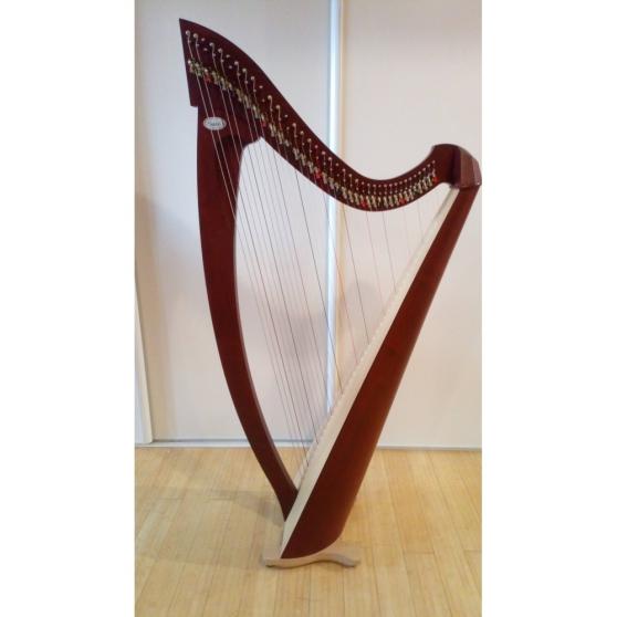 Annonce occasion, vente ou achat 'Harpe Celtique salvi modèle Titan 38 c'