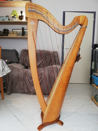 Harpe celtique korrigan 38 cordes