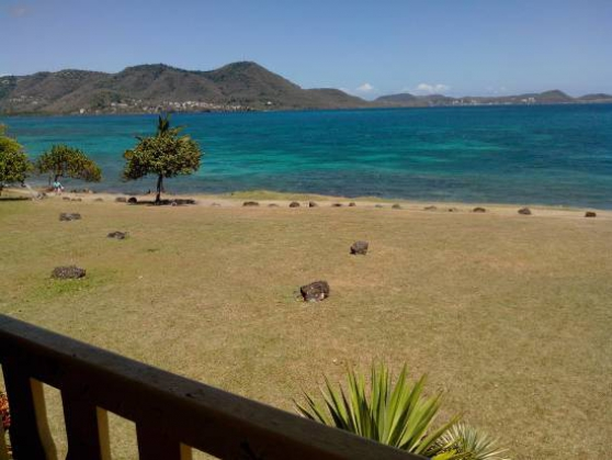 Annonce occasion, vente ou achat 'Fêtes de fin d\'année en Martinique !'