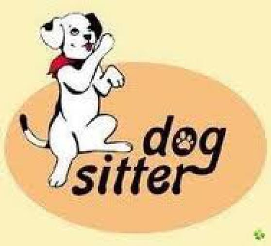 Je garde votre chien en votre absence - Photo 3