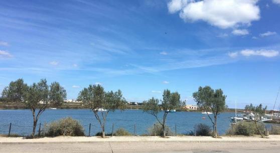 appartement sud portugal  vue sur mer - Annonce gratuite marche.fr