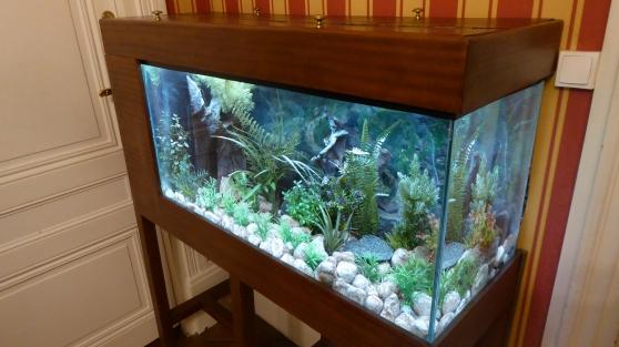 a saisir-aquarium 200 l et meuble acajou - Annonce gratuite marche.fr