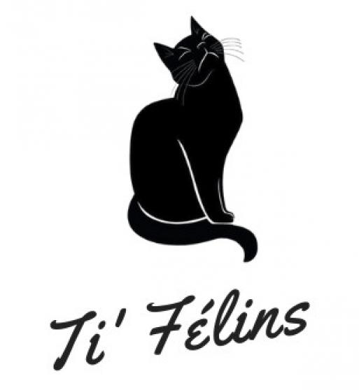 Pension pour chats Ti'Félins