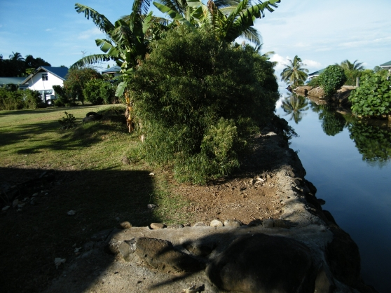Propriete 2000 m2 3 bungalows tahiti immobilier a for Achat maison tahiti