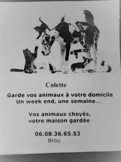 garde animaux a votre domicile - Annonce gratuite marche.fr