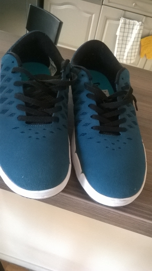 Annonce occasion, vente ou achat 'Basket Nike Sb bleues'