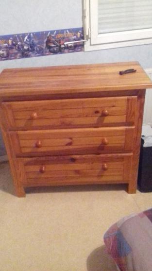 Commode bois meubles d coration commode quincieux for Achat maison quincieux
