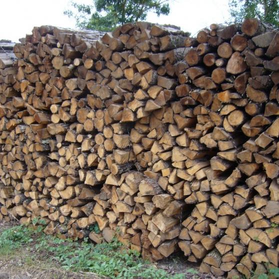 Annonce occasion, vente ou achat 'Large Bois de chauffage'