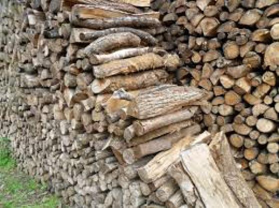 Annonce occasion, vente ou achat 'Stock de bois de chauffage'