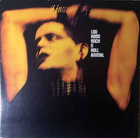 Annonce occasion, vente ou achat 'SERIE LOU REED + slade'