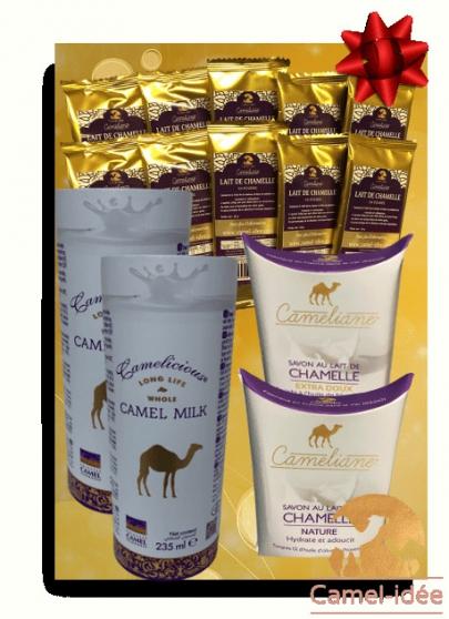 Camel Idée Découverte