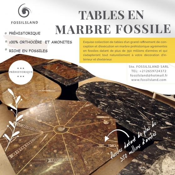 Tables en marbre riche en fossiles