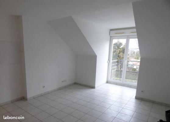 Appartement 36m2 Villeneuve sur Yonne - Photo 2