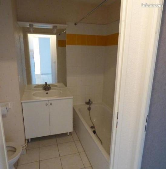 Appartement 36m2 Villeneuve sur Yonne - Photo 3