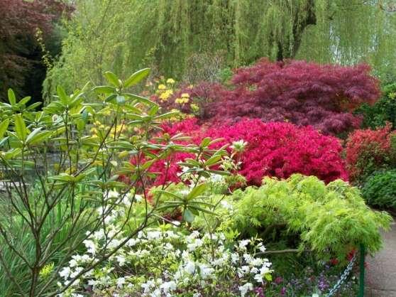 Conception et création de jardins