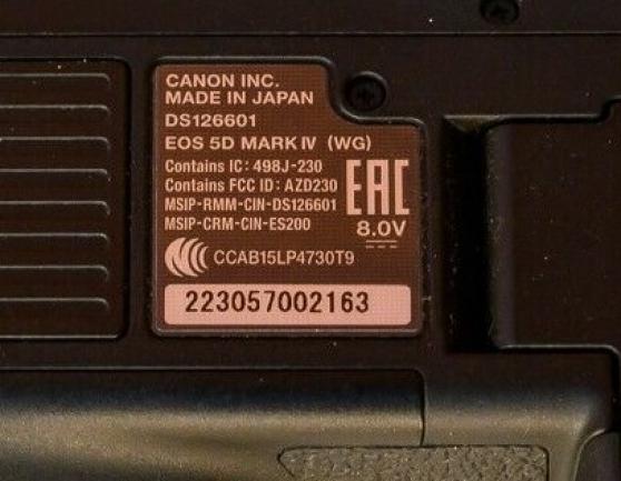 Canon 5D Mark IV - Photo 4