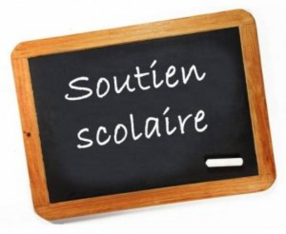 Soutien scolaire à Rouen + par webcam.