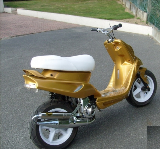 Annonce occasion, vente ou achat 'Stunt scooter MBK nickel,'