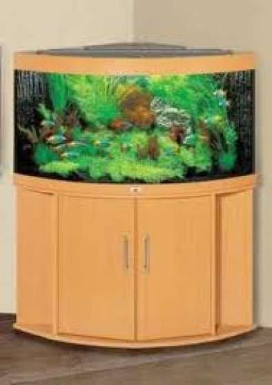 aquarium d 39 angle juwel trigon 190l hetre saint egr ve animaux aquarium vivarium saint. Black Bedroom Furniture Sets. Home Design Ideas