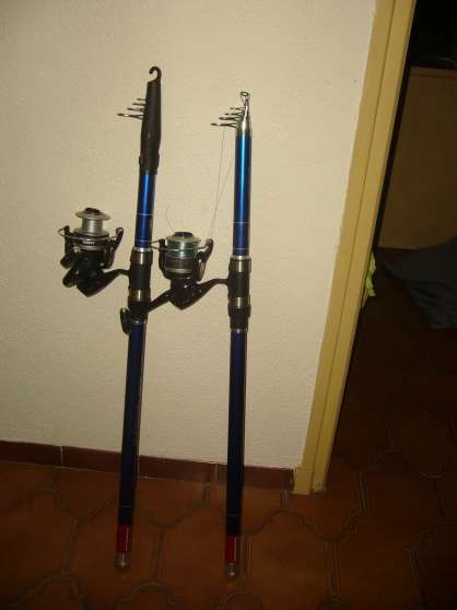 Annonce occasion, vente ou achat 'Cannes a peches surf casting \