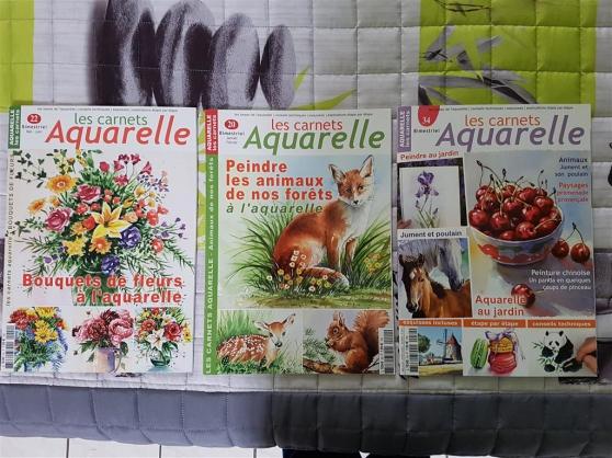 Annonce occasion, vente ou achat 'Lot de 3 magazines Les Carnets Aquarelle'