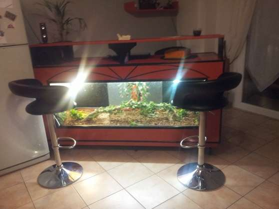 bar vivarium terrarium animaux aquarium vivarium b ziers reference ani aqu bar petite. Black Bedroom Furniture Sets. Home Design Ideas