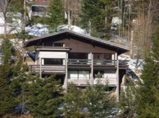 Annonce occasion, vente ou achat 'Grand CHALET'