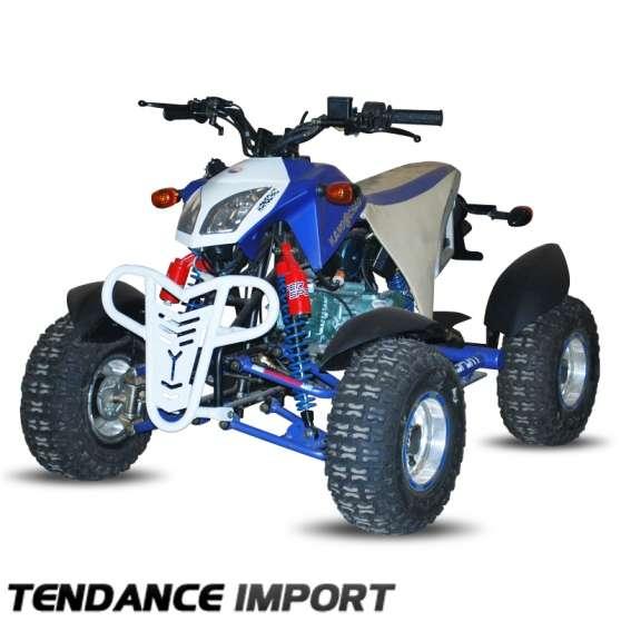 quad snake 110cc moto scooter v lo quads ham. Black Bedroom Furniture Sets. Home Design Ideas