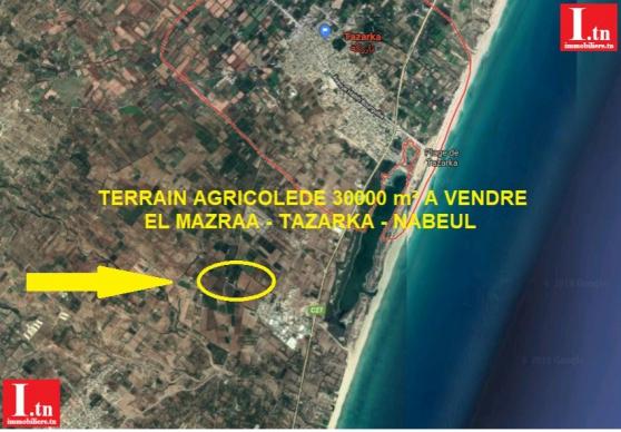 Annonce occasion, vente ou achat 'Terrain agricole tazarka el mazra 3m399'