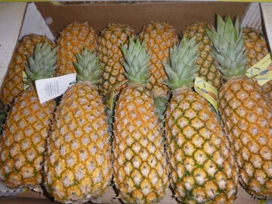 Disponible de l'ananas frais