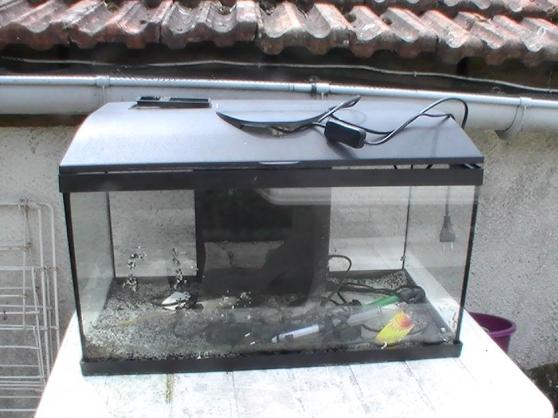 Annonce occasion, vente ou achat 'Aquarium'